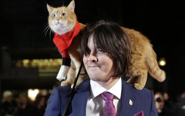 Ces chats qui ont fait l'histoire