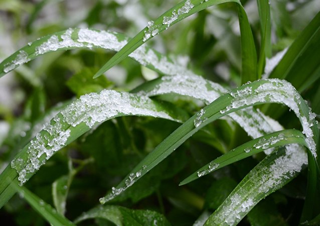 2017 sera marqué par des phénomènes météorologiques terribles