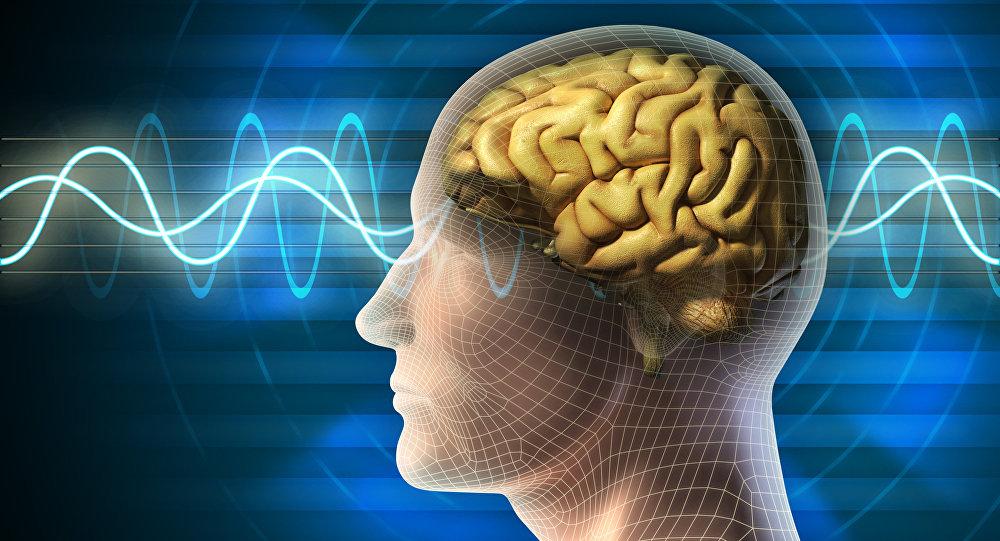 GPS et cerveau ne font pas bon ménage, estiment des scientifiques UK