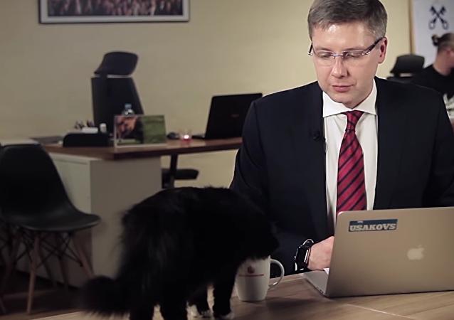 Le chat aide le maire de Riga à répondre aux questions