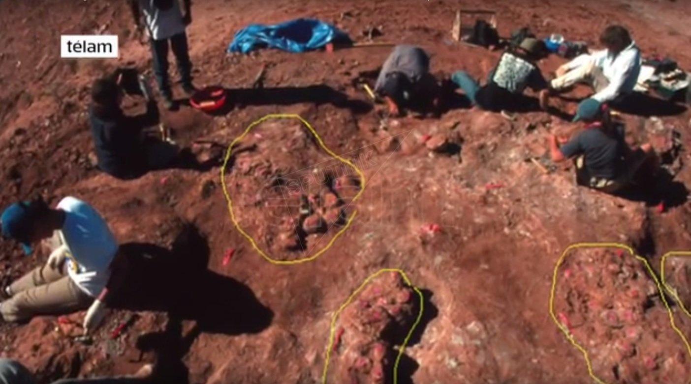 oeufs des dinosaures retrouvés en Argentine