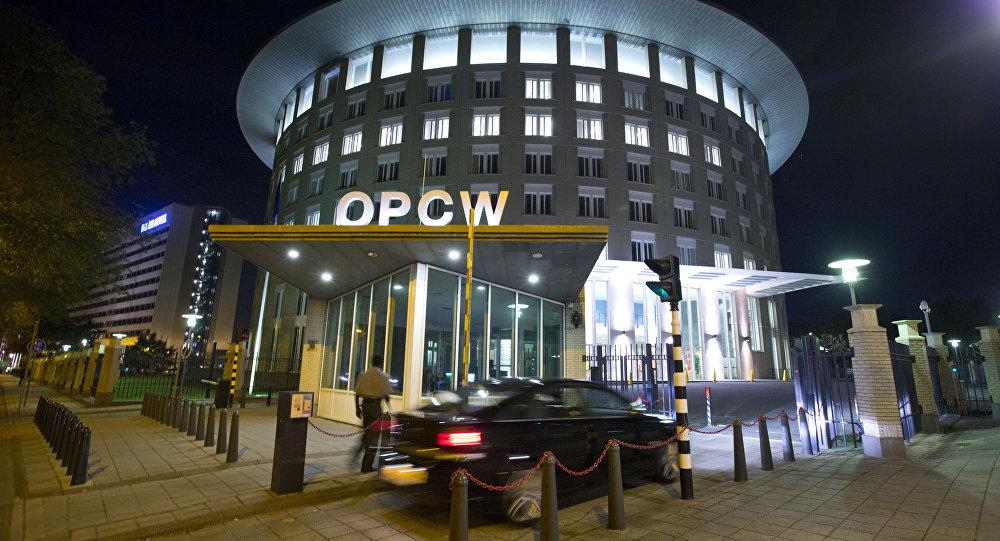 Le siège de l'OIAC à La Haye (archive photo)