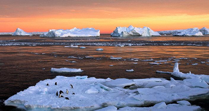 Des scientifiques découvrent la nature des fissures géantes en Antarctique