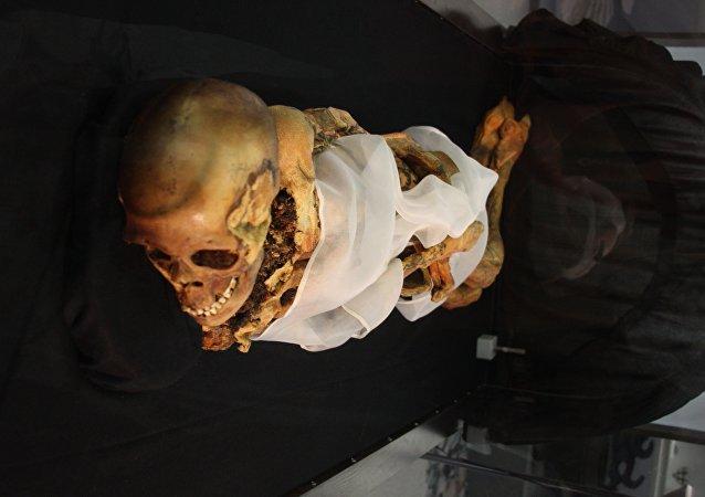 L'Ermitage présente une tomographie de ses momies, une première