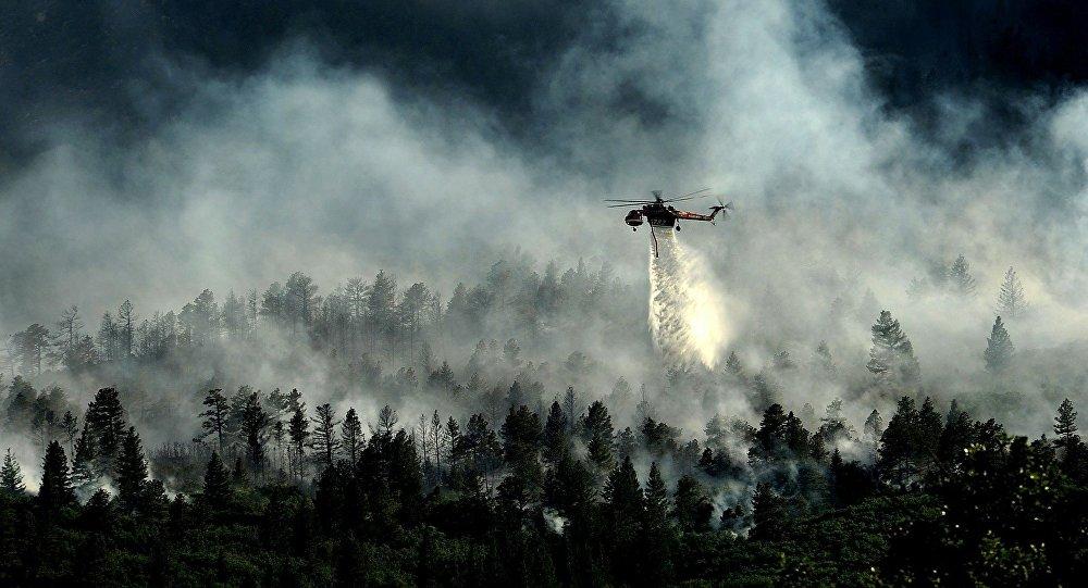 Un puissant feu détruit la forêt autour de la centrale de Fukushima
