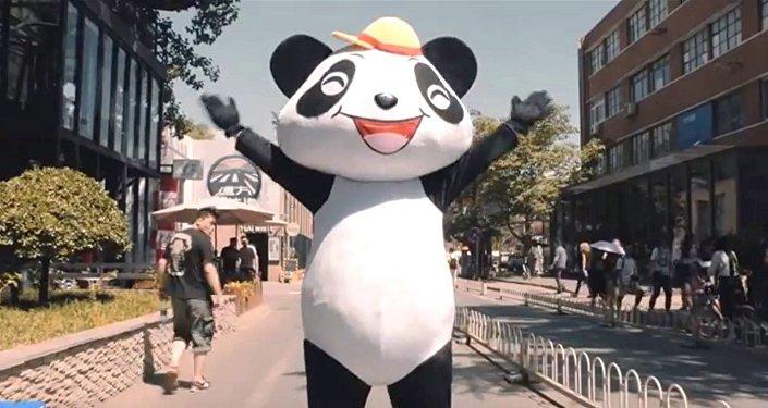 Un panda dansant dans le clip qui vante «La nouvelle route de la Soie»