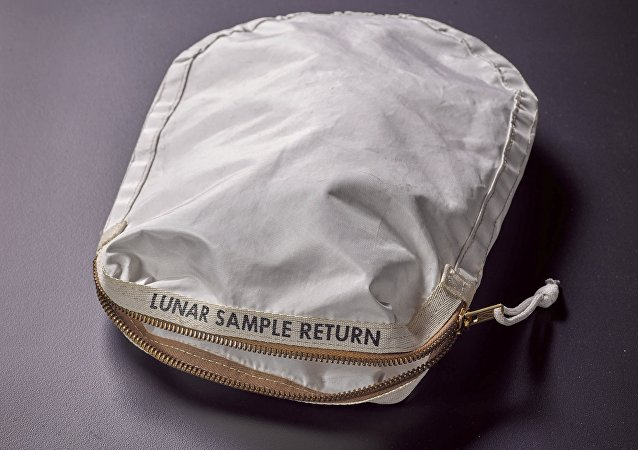 An Apollo 11 Contingency Lunar Sample Return Bag