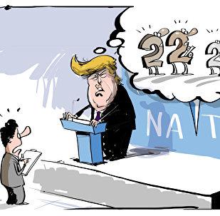 Trump exige que les alliés renflouent les coffres de l'Otan