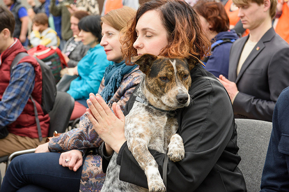La première cérémonie bouddhiste de bénédiction des animaux à Moscou