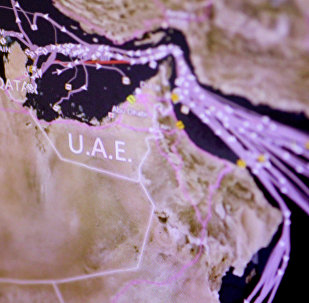 An Eikon ship-tracking screen shows tanker traffic around Qatar over the last seven days in this June 6, 2017