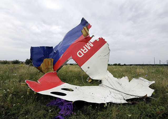 le crash du MH17