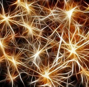 chaîne neuronale