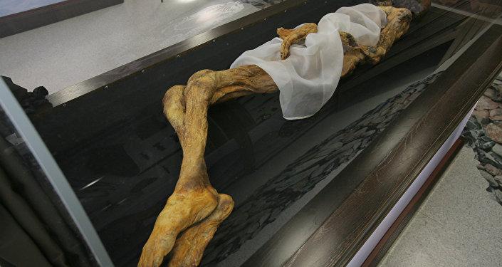 Des scientifiques péruviens recréent le visage d'une momie célèbre