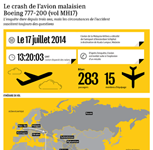 Le crash de l'avion malaisien Boeing 777-200 (vol MH17)