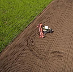 Un champ dans la région de Krasnodar en Russie