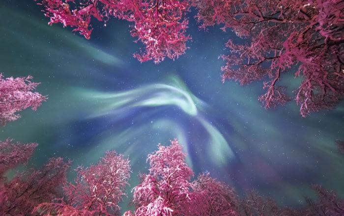 Les plus belles photos astronomiques de l'année