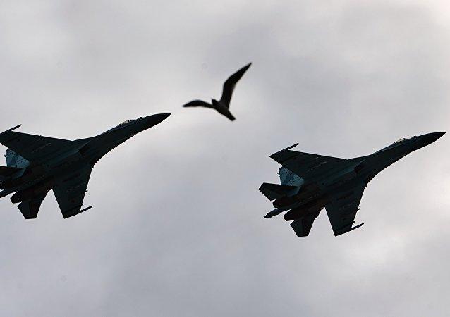 Des Su-27 russes