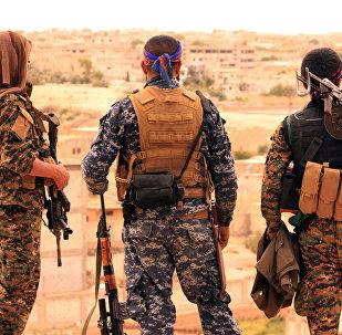 Forces démocratiques syriennes