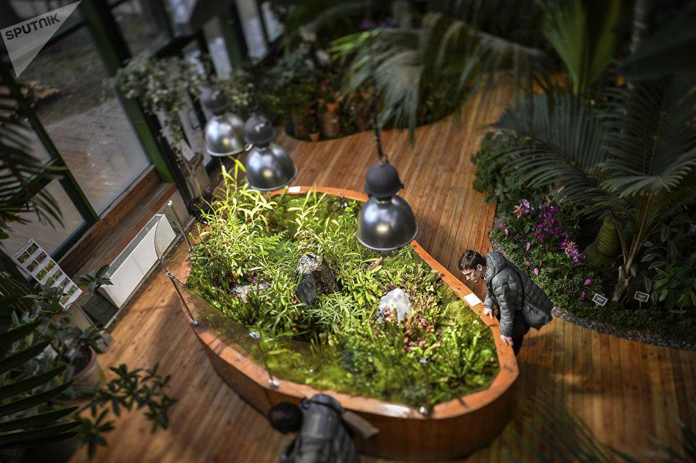 Le jardin des apothicaires de Moscou