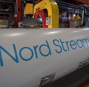 Les tubes du gazoduc Nord Stream 2 (archives)