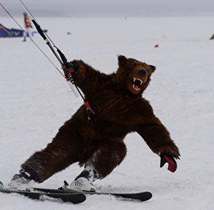 Pourquoi associe-t-on la Russie aux ours?