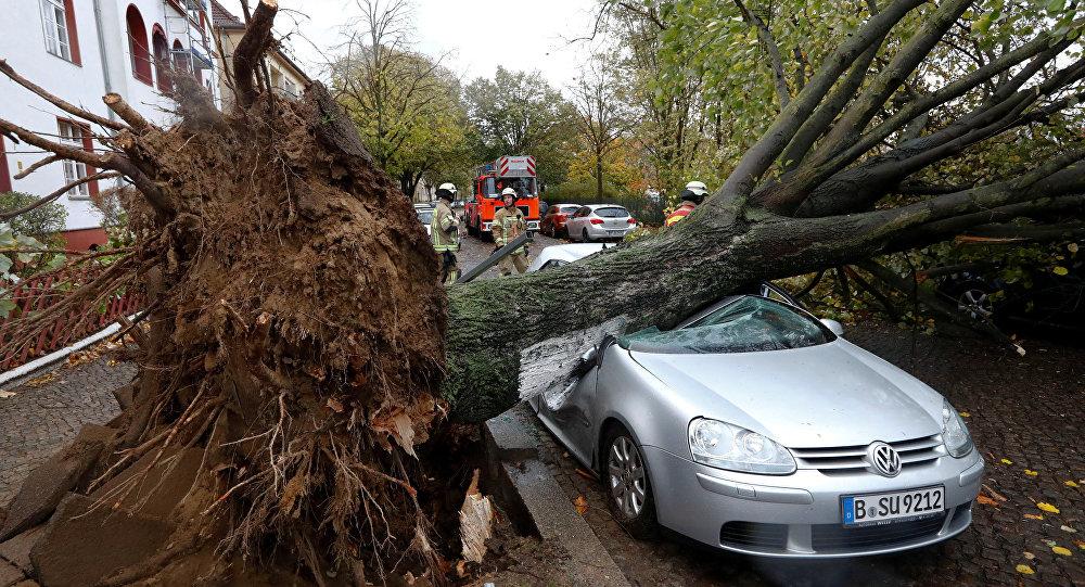 La tempête Herwart fait au moins sept morts (IMAGES) — Europe centrale