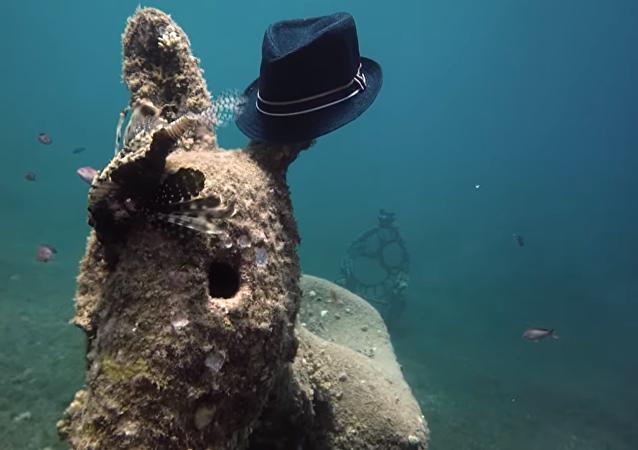 Mais que fait ce mystérieux âne au chapeau au fond de la mer?