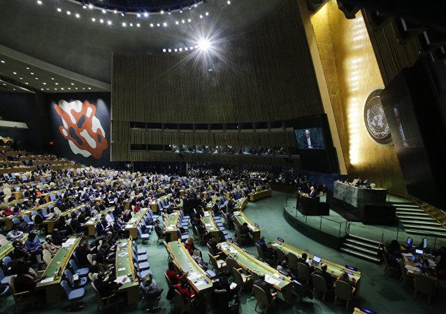 L'Assembée générale de l'Onu