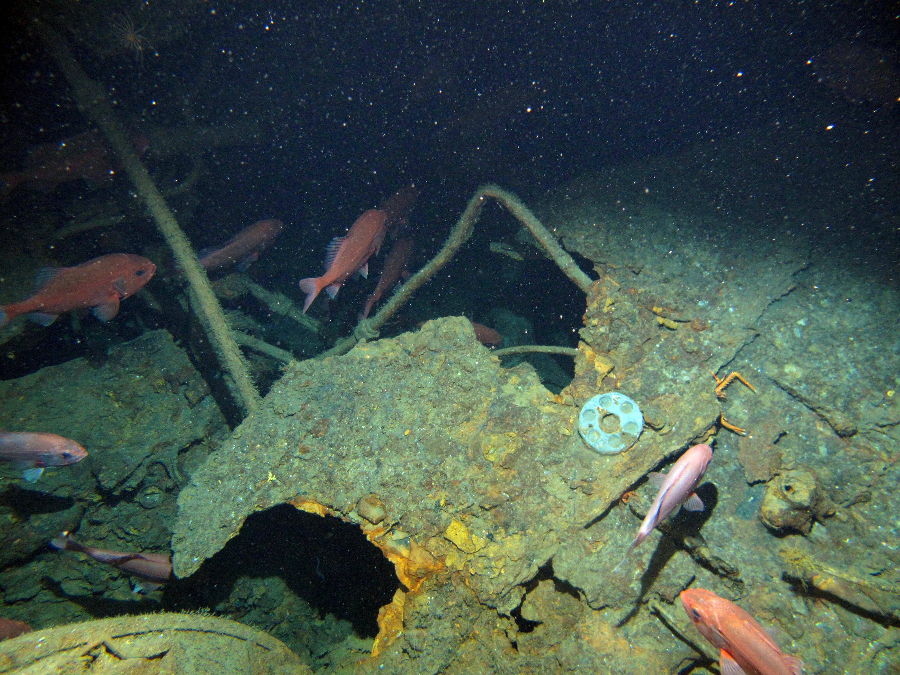 Des fragments du sous-marin australien AE1 découvert le long des côtes de la Papouasie-Nouvelle-Guinée