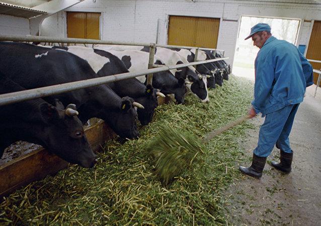 une ferme en Russie