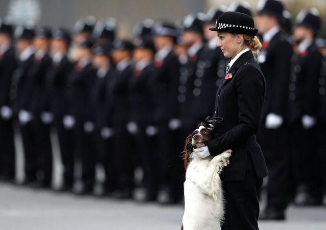 Policière britannique