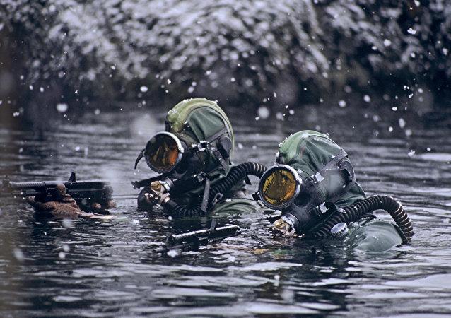 Des nageurs de combats. Image d'illustration