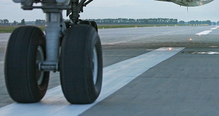 Passengers of bird-hit plane flown to destination point (image de démonstration)