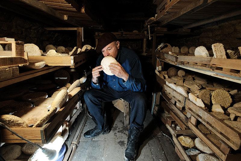 Dans la cave à fromage de Vladimir Borev