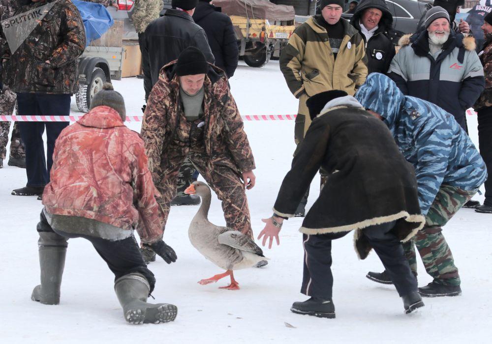 Combats d'oies dans la région de Toula