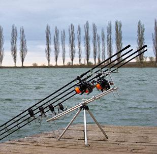 Cannes à pêche (image d'illustration)