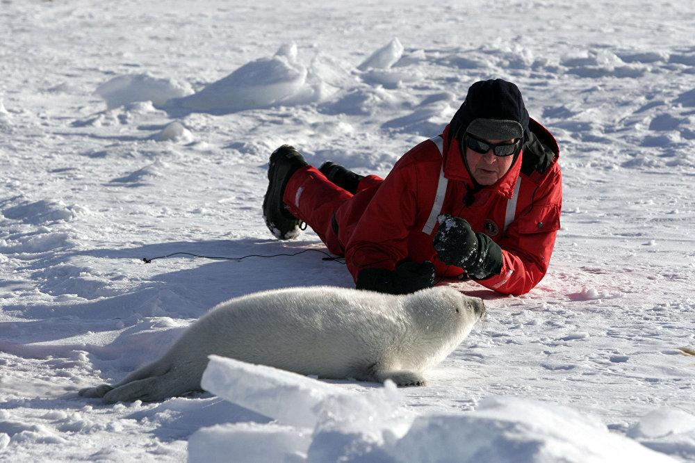 Paul McCartney avec un bébé phoque du Groenland