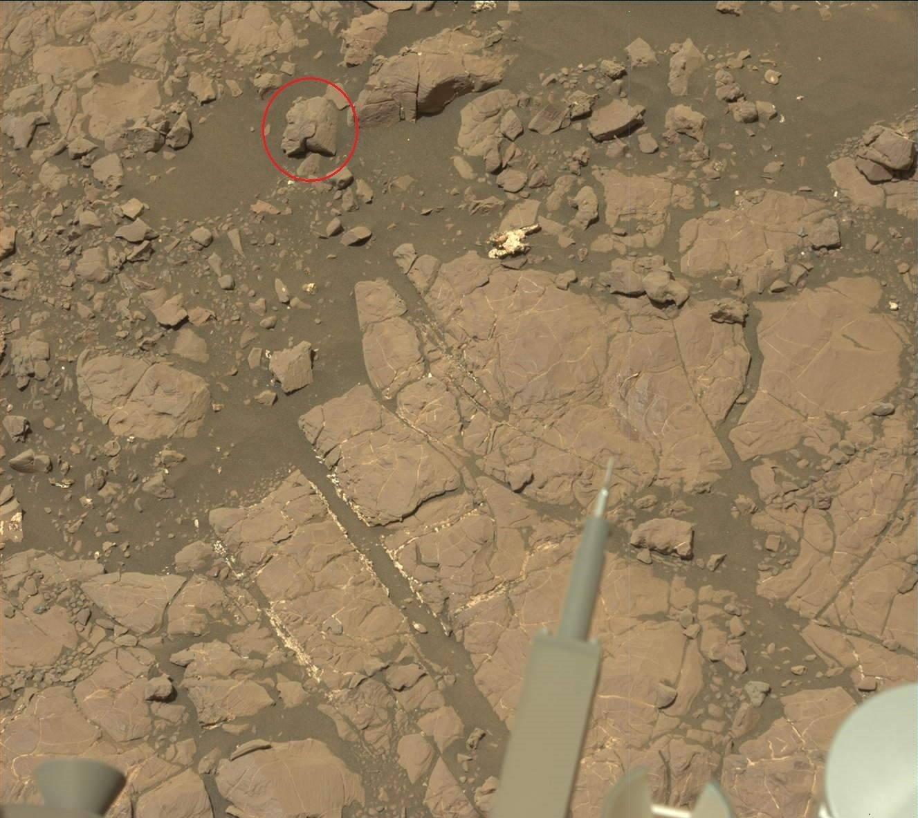 Un cliché réalisé par le rover Curiosity à la surface de Mars