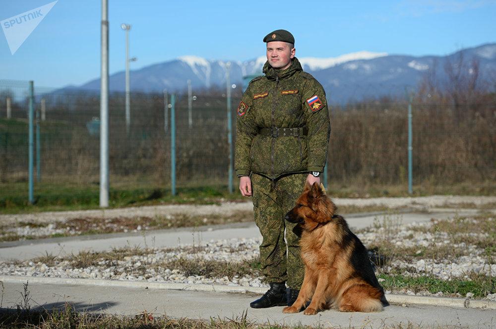 Les chiens utilisés dans les services de garde-frontière du FSB russe sont de véritables «soldats universels»