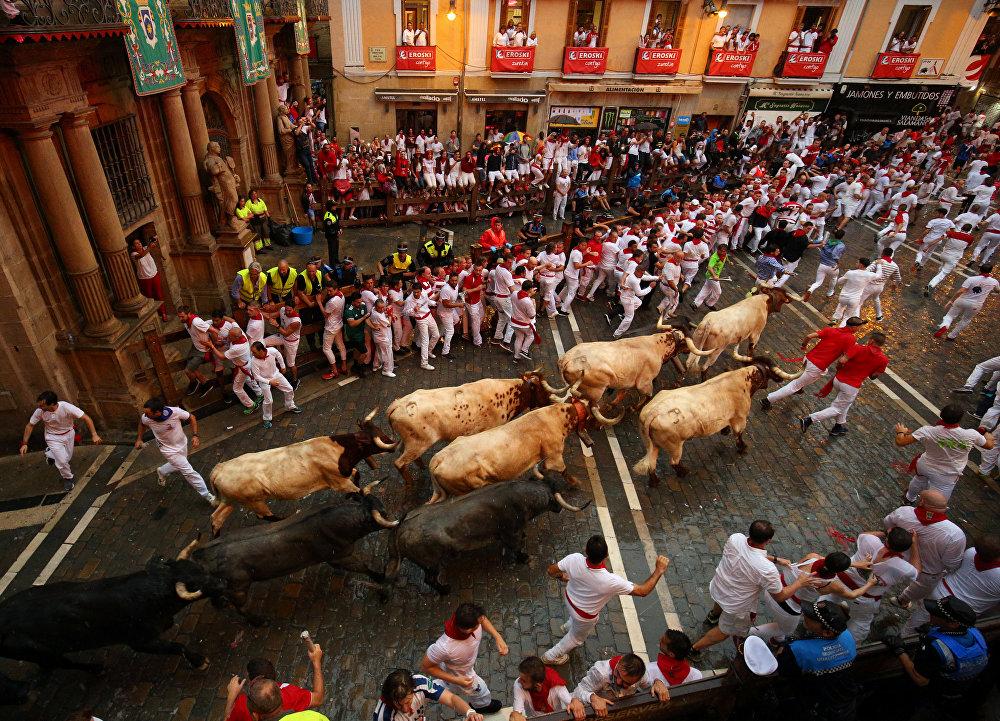Un spectacle des plus extravagants: course de taureaux aux Fêtes de San Fermin en Espagne