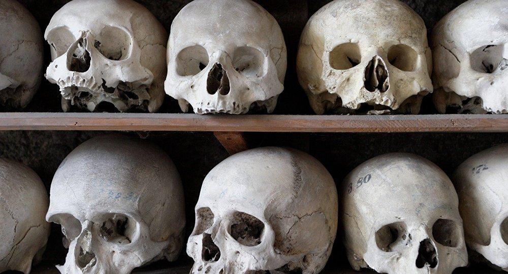 Des crânes
