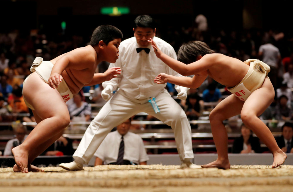 Les compétitions de sumo des écoliers japonais