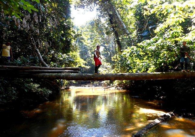 Expedição da Funai constata evidências de índios isolados e inibe a presença de infratores nas terras indígenas Vale do Javari e Mawetek