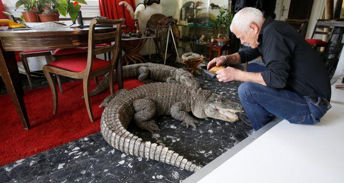 Mes amis les animaux: ce Français a 400 reptiles chez lui!