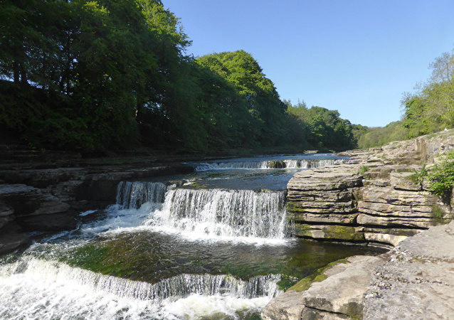 Aysgarth Falls, le parc national des Yorkshire Dales