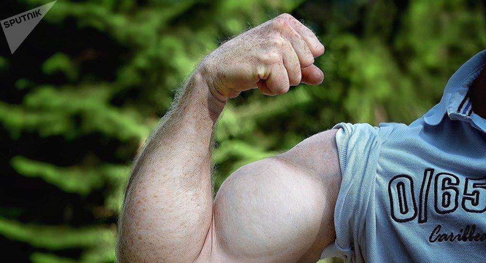 les muscles