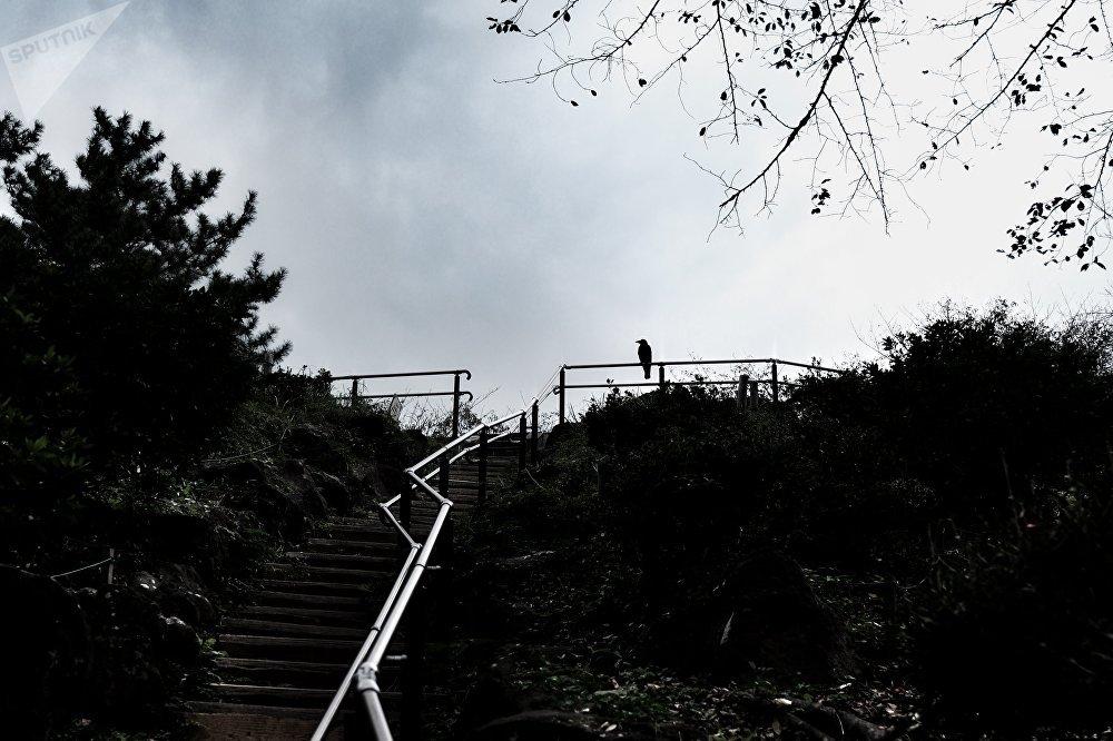 Le mont Hakone
