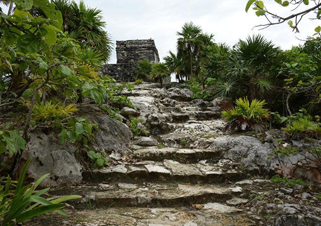 Des ruines mayas (image d'illustration)