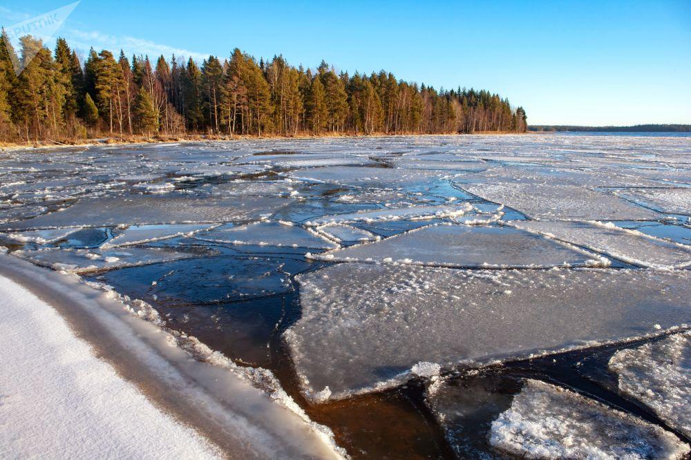 Des glaces flottantes près des rives du lac Onega dans la région de Prionezhski en République de Carélie
