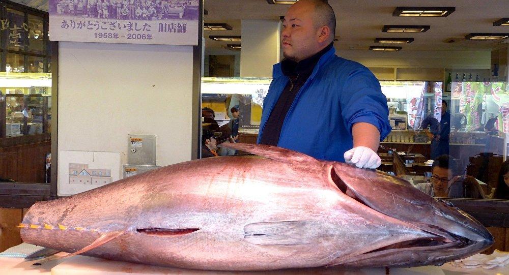 Un thon vendu à 2,7 millions d'euros — Japon